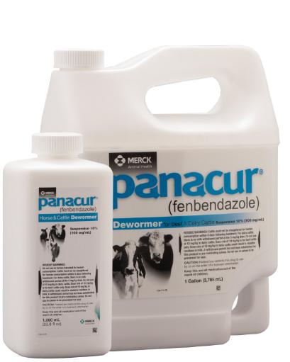 Panacur suspension for cattle