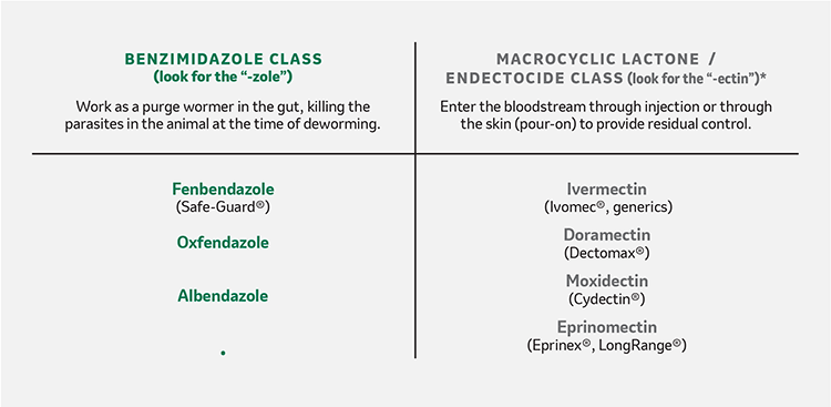 Types of benzimidazole and macrocyclic lactone / endectocide dewormers for cattle