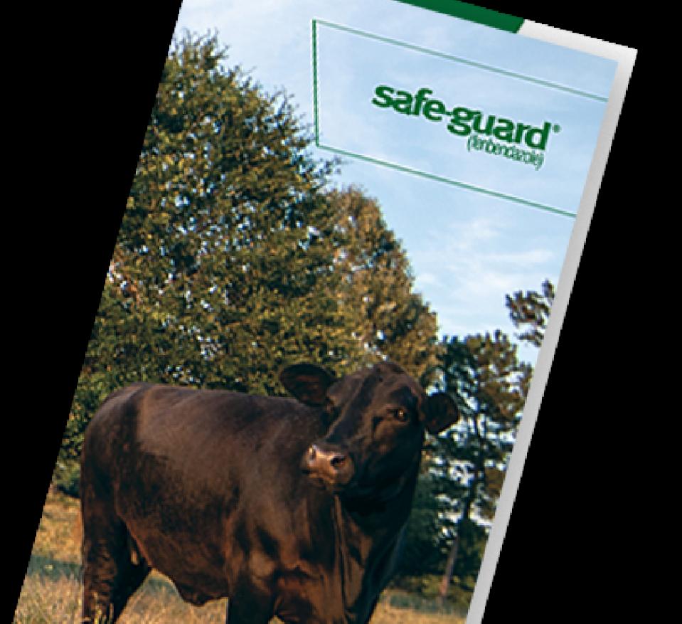 SAFE-GUARD FECRT brochure