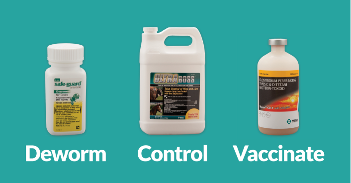 "Words ""Deworm - Control - Vaccinate"" under the three products: Safe-Guard Dewormer, UltraBoss, Vision CD-T"